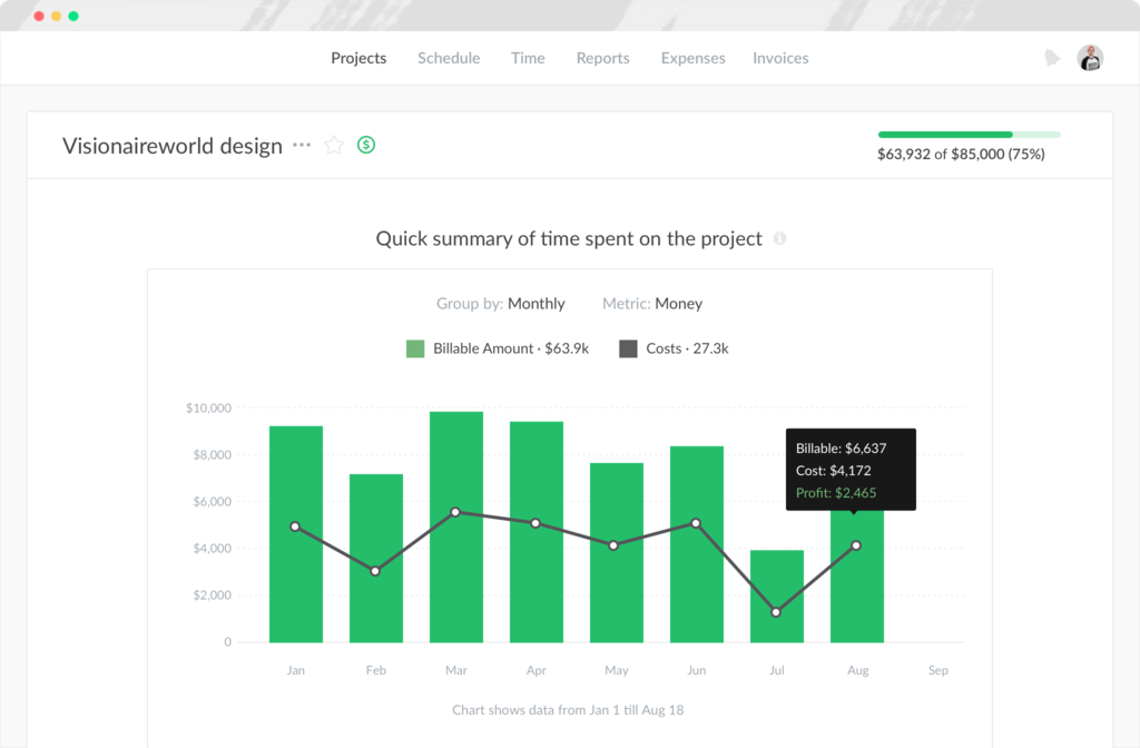 Project summary in Everhour screenshot