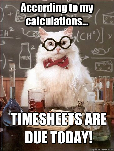 top timesheet memes to meet the payroll deadline