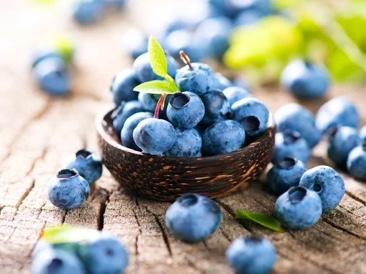 Brain Food Snacks - Blueberries
